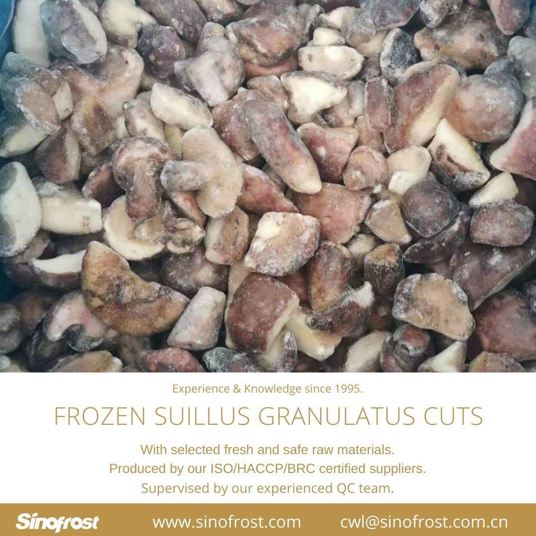 冷凍松菇塊,速凍松菇塊 13