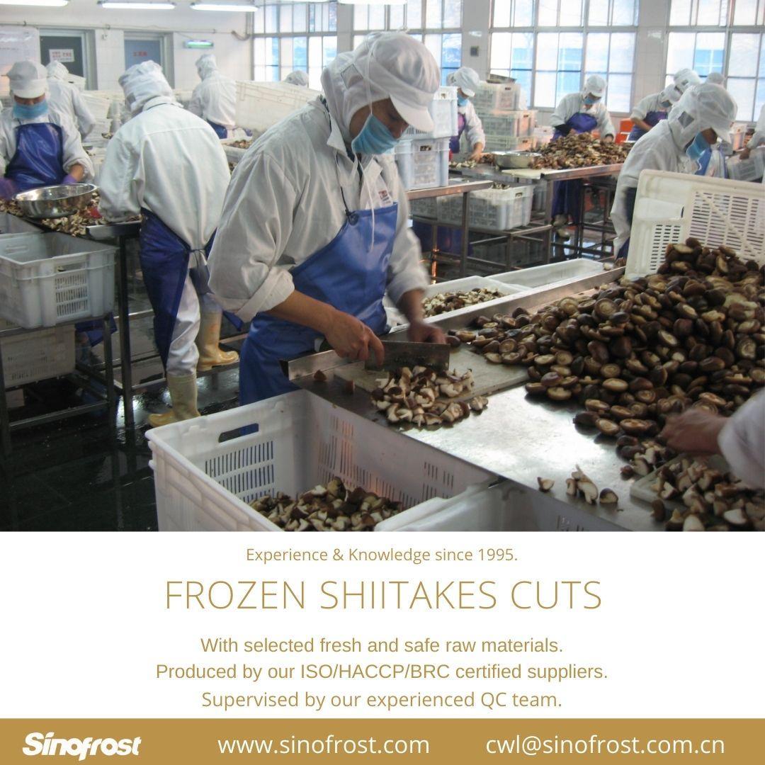 冷凍香菇,速凍香菇 13