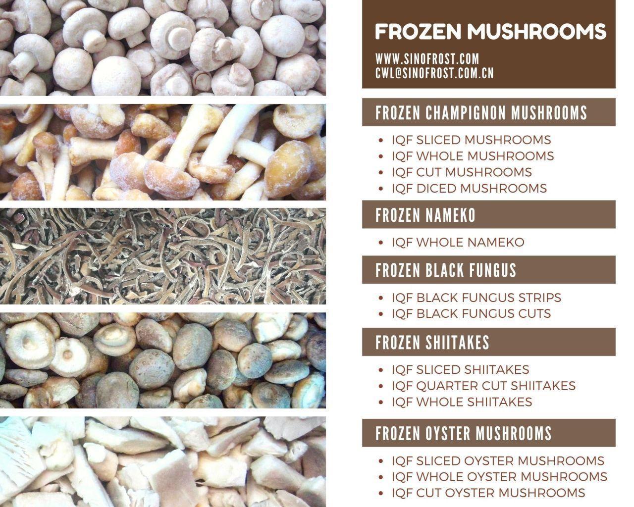 冷凍平菇,速凍平菇,條/塊 6