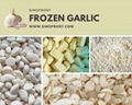 Frozen Garlic Puree,Frozen Garlic Paste,IQF Garlic Puree Tablets