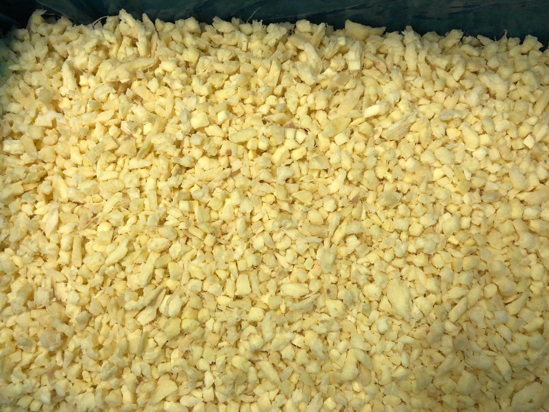 冷凍姜泥,速凍姜泥,冷凍姜泥塊 13