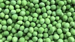 IQF Green Peas,Frozen Green Peas,IQF Frozen Green Peas