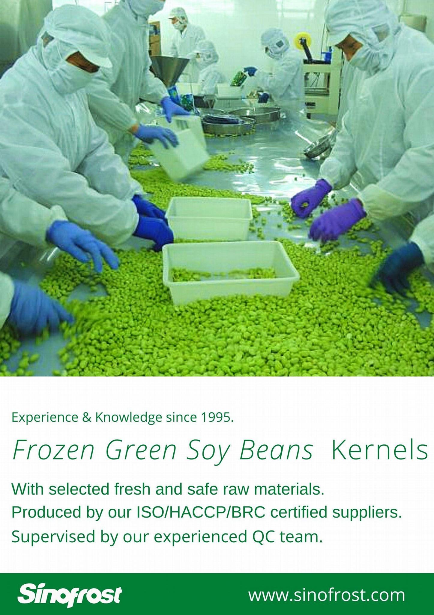 冷凍毛豆,速凍毛豆,冷凍枝豆,速凍枝豆 14