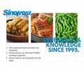 冷凍毛豆,速凍毛豆,冷凍枝豆,速凍枝豆 3