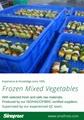 冷凍混合蔬菜,速凍混合蔬菜 9