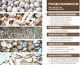 IQF Mixed Mushrooms,Frozen Mixed Mushrooms,Mushrooms Blend,Wild Mushrooms Blend