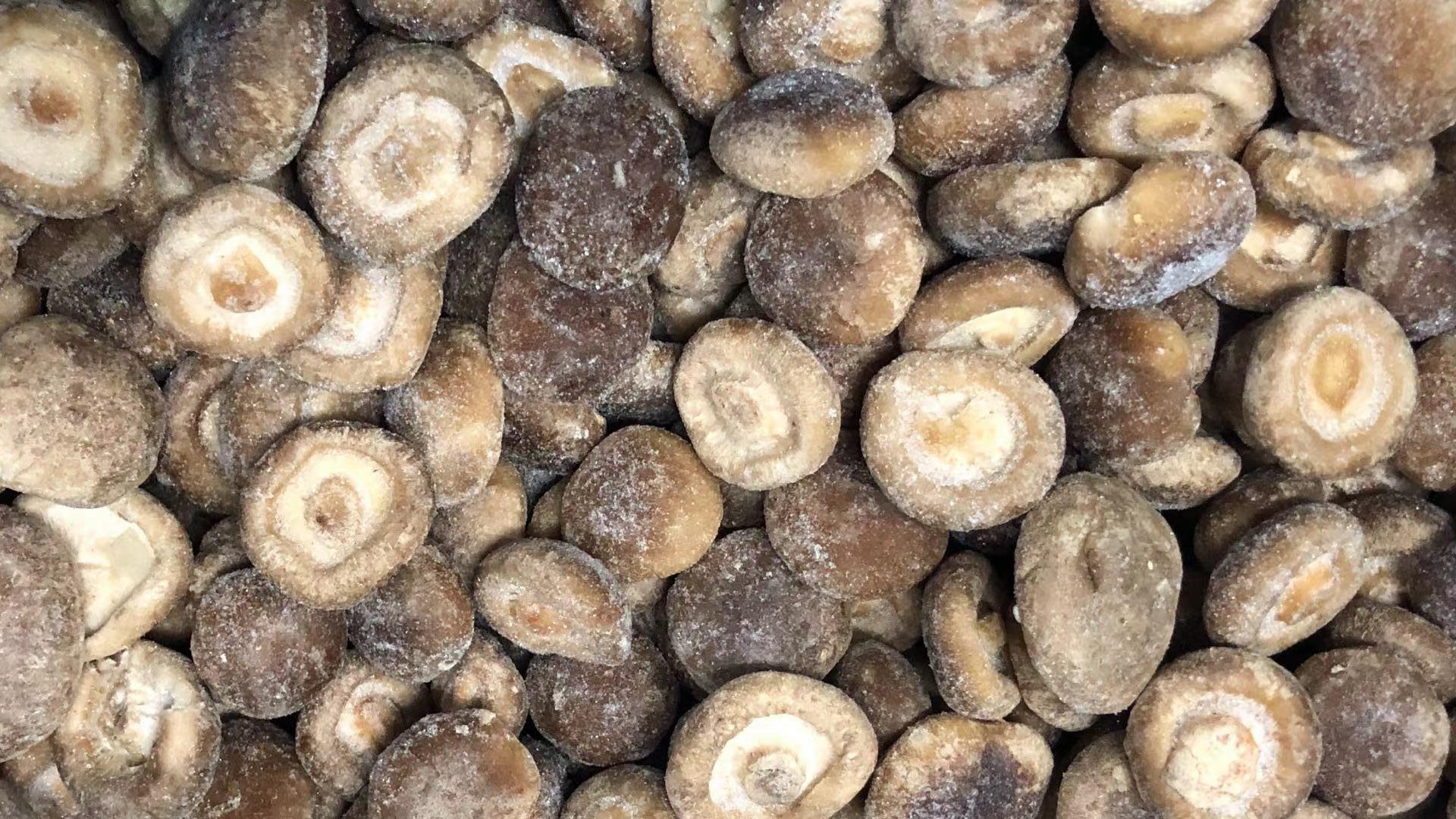 冷凍香菇,速凍香菇 19