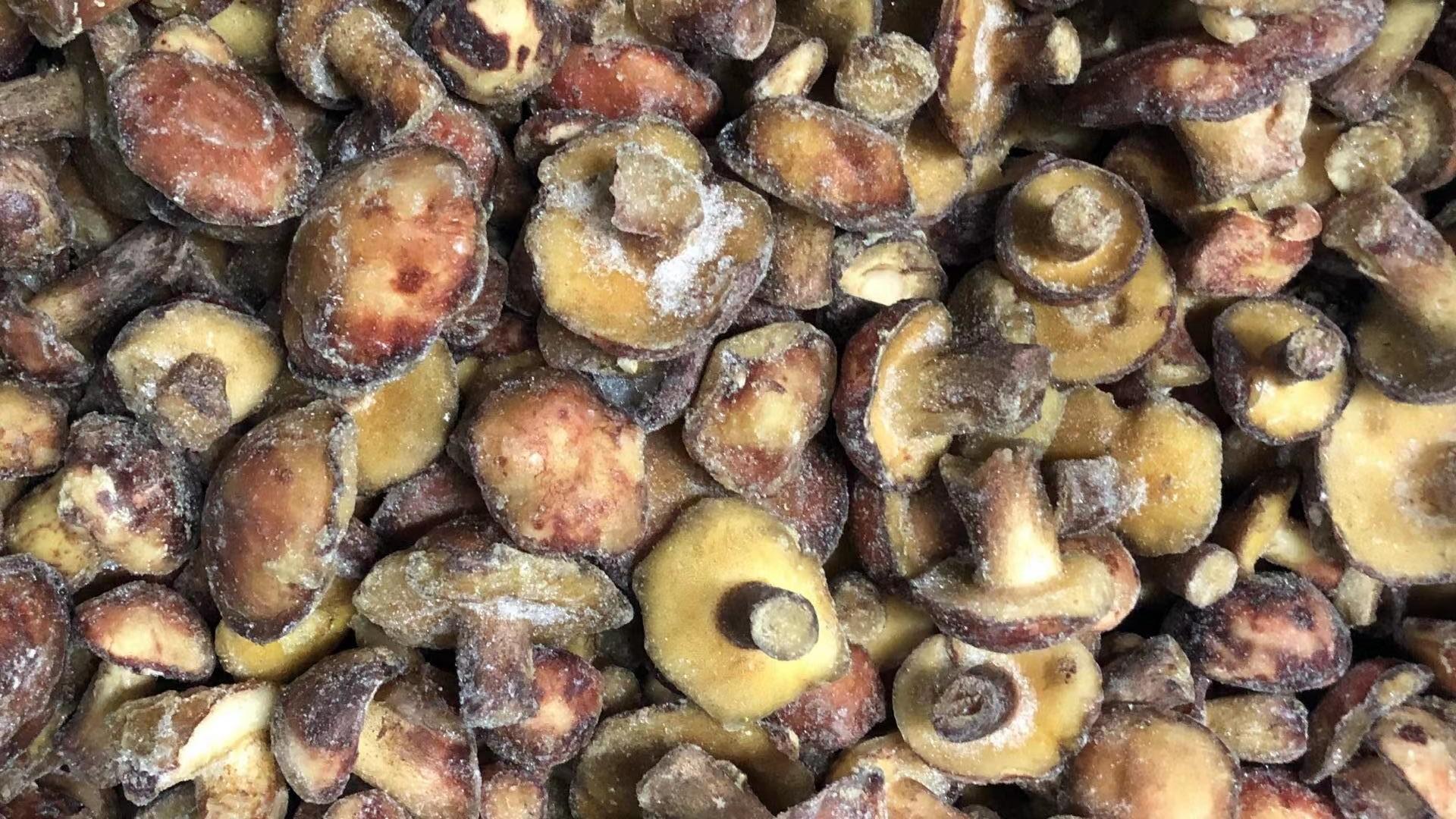 冷凍松菇塊,速凍松菇塊 20