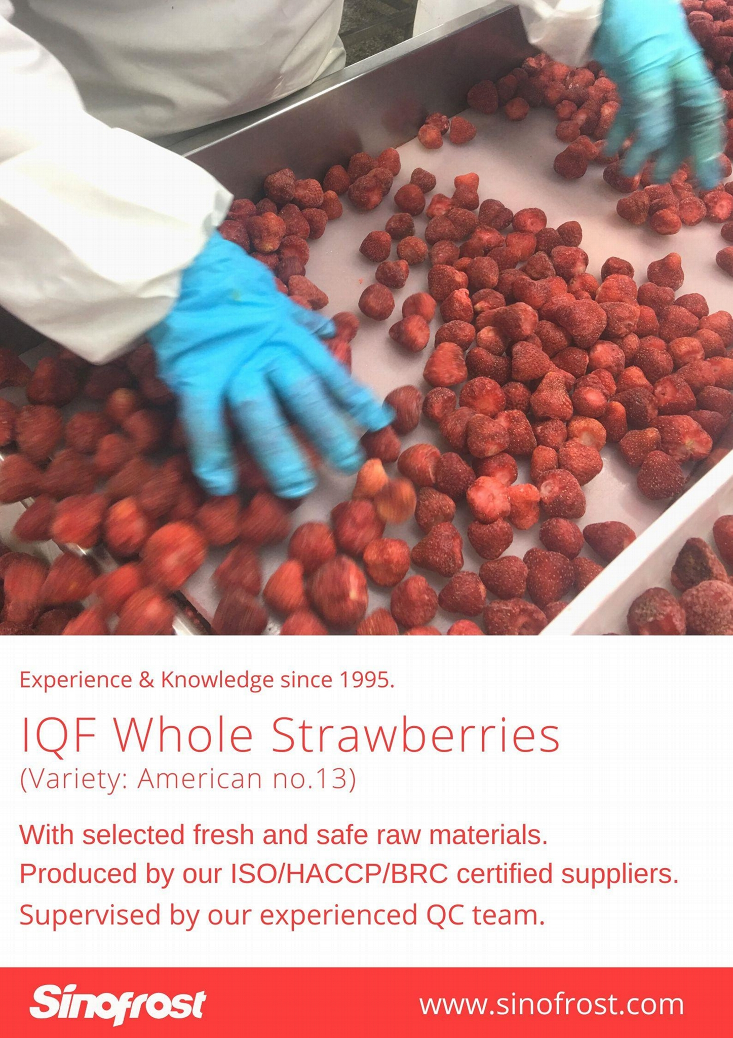 IQF Diced Strawberries,Frozen Strawberry Dices,IQF Sliced Strawberries 16