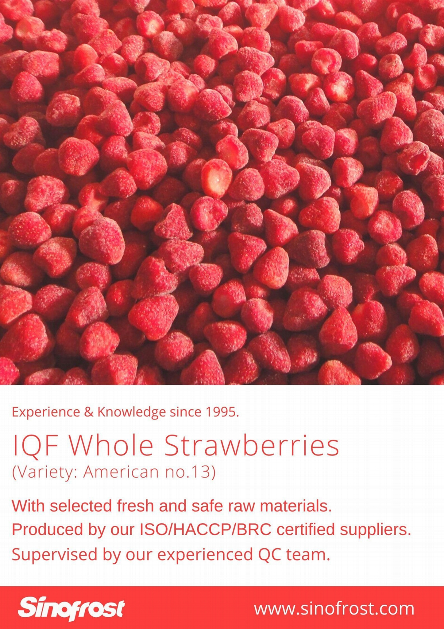 IQF Strawberries,Frozen Whole Strawberries,IQF Strawberry,American no.13 variety 18