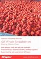 冷凍草莓,速凍草莓,冷凍草莓泥,速凍草莓泥 11