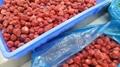 冷凍草莓,速凍草莓,冷凍草莓泥,速凍草莓泥 3