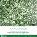 IQF Welsh Onion Slices,Frozen Welsh Onion Dices,IQF Welsh Onion Cuts