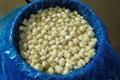 鹽水蘑菇,鹽漬蘑菇 3