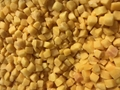 IQF Yellow Peach Dices,Frozen Yellow Peaches Dices,IQF Yellow Peach Cubes