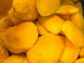 IQF Mango Flesh,IQF Mango Halves,IQF Mango Pieces,IQF Mango Chunks