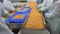 IQF Steamed Sweet Potato Cuts,Frozen Steamed Sweet Potato  Random Cuts