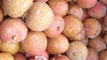 IQF Lychees ,Frozen Litchi,IQF Litchis,Frozen Lychees