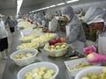 IQF Apple Slices,IQF Apple Segments,IQF Apple Halves,Frozen Apples Slices,peeled