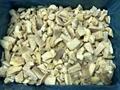 IQF Pleurotus Cubes,Frozen Pleurotus Strips,IQF Oyster Mushroom Slices