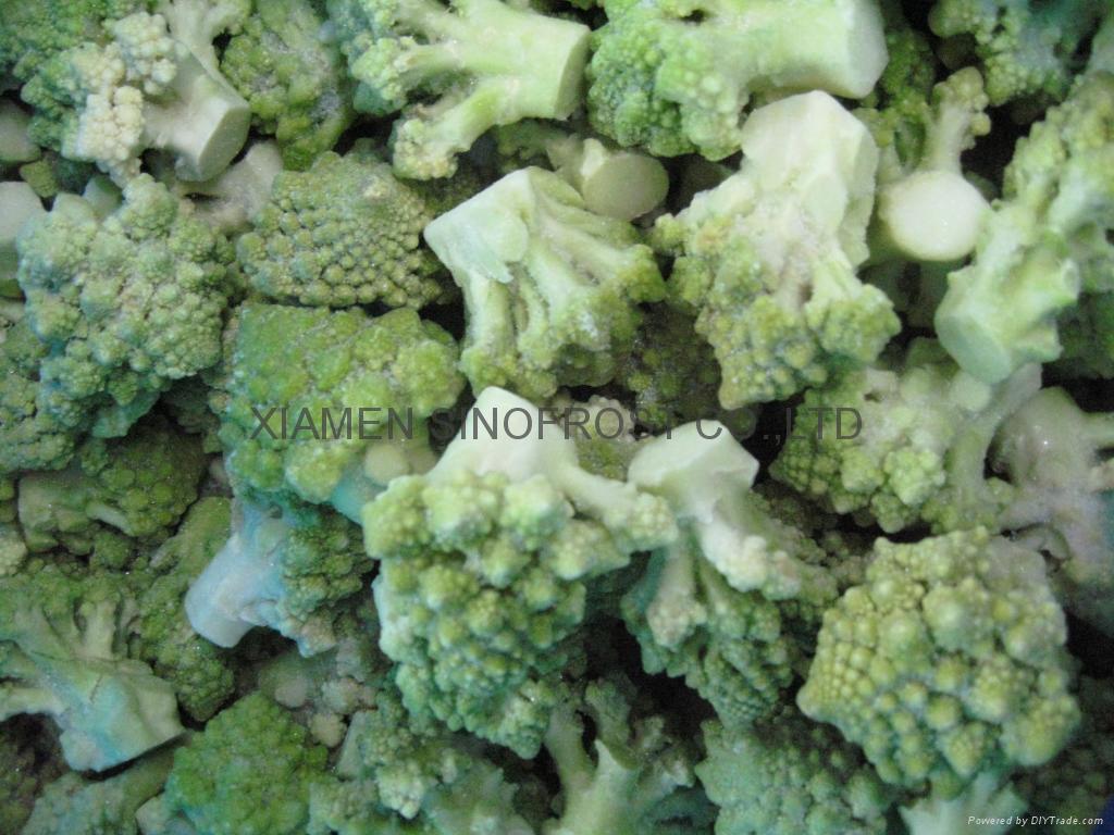 IQF Romanesco Florets, Frozen Romanesco Florets 5