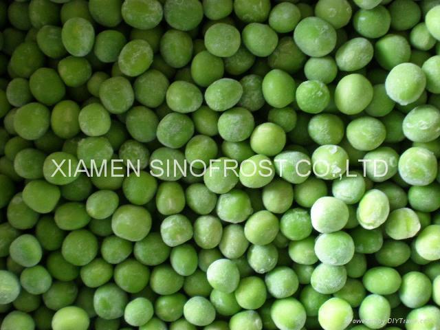 IQF green peas,Frozen green peas 2