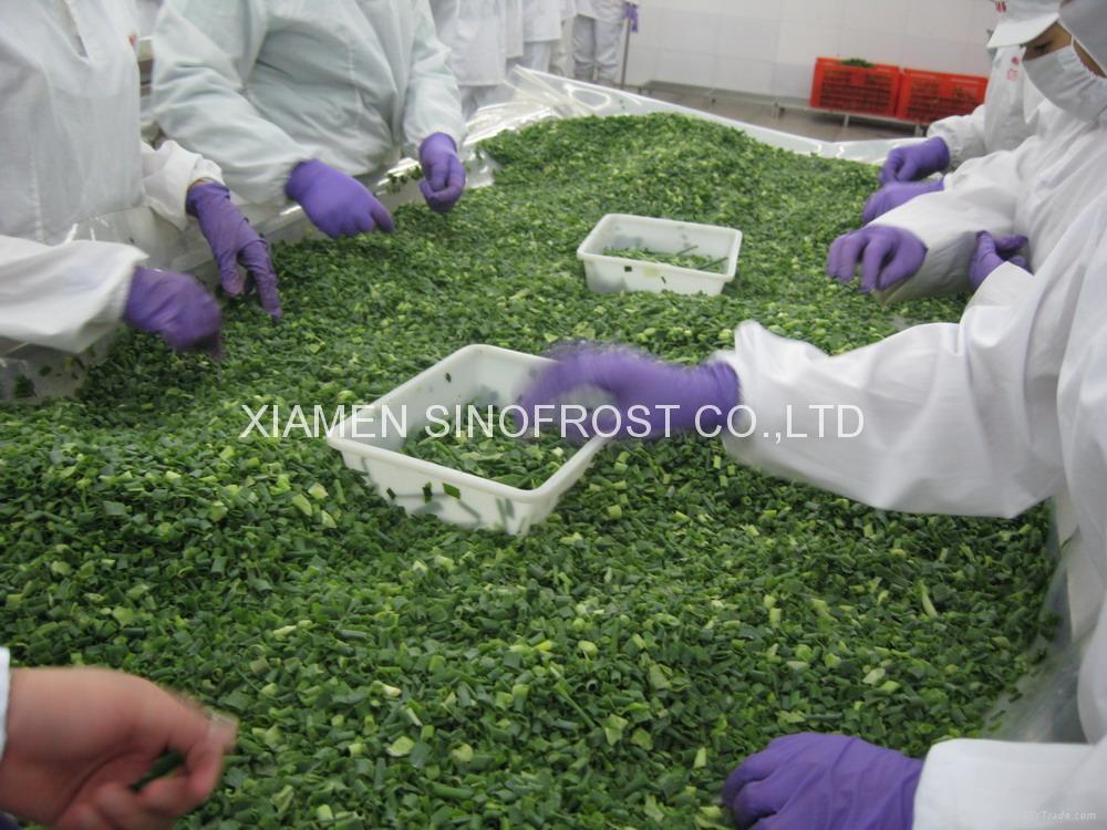 冷凍青蔥丁,速凍青蔥丁 12