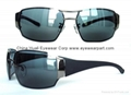 Titanium Sunglasses