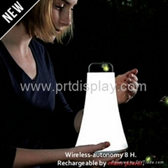 White Color  Variable Intensity LED Lantern