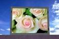 led video display,advertising led display, led board,led wall