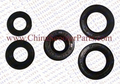 Dirt bike spare parts/Oil gasket
