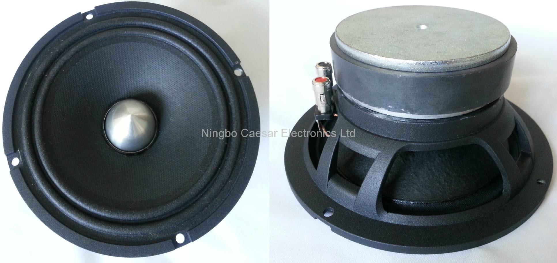HIFI 6 inches ferrite magnet speaker(AF-6002)  1