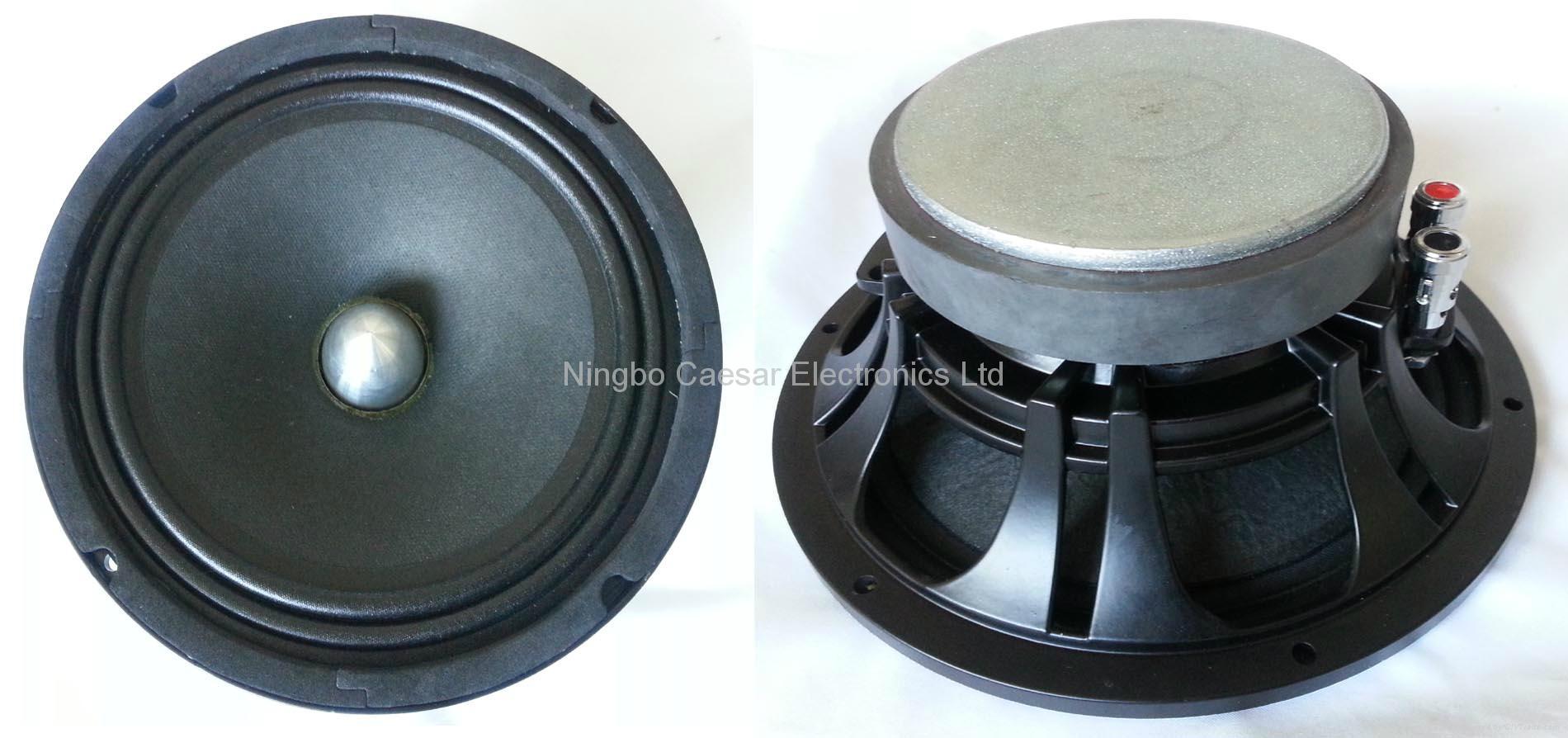 8 inches ferrite speaker(AF-8002) 1