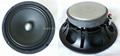 8 inches ferrite speaker(AF-8002)