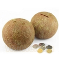 Plastic fruit money saving box 13