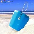 Beach Container