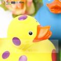 橡皮鸭子 12