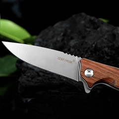 3Cr Folding Knife