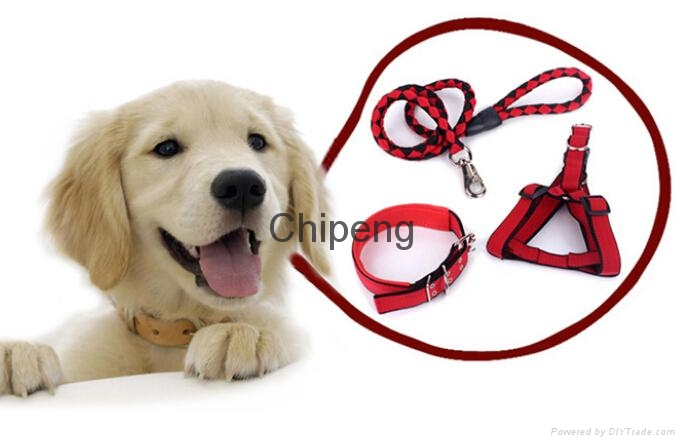 Hot Sale Heavy Duty Dog Collar Leash with dog Harness &Traction Rope Leash 3 pcs 1