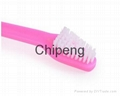 Cat & Dog Toothbrush Dual Headed Dental Hygiene Brushes for Small to Large Dogs 2