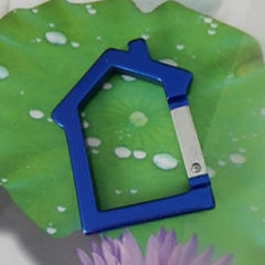 House design keychain 1607273