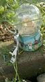 zinc alloy flip top bottle opener 1613813 4