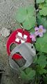 ss oval bottl opener keychain 1613827 3