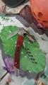 Side - side wood grain decorative wine bottle opener 1614012 6