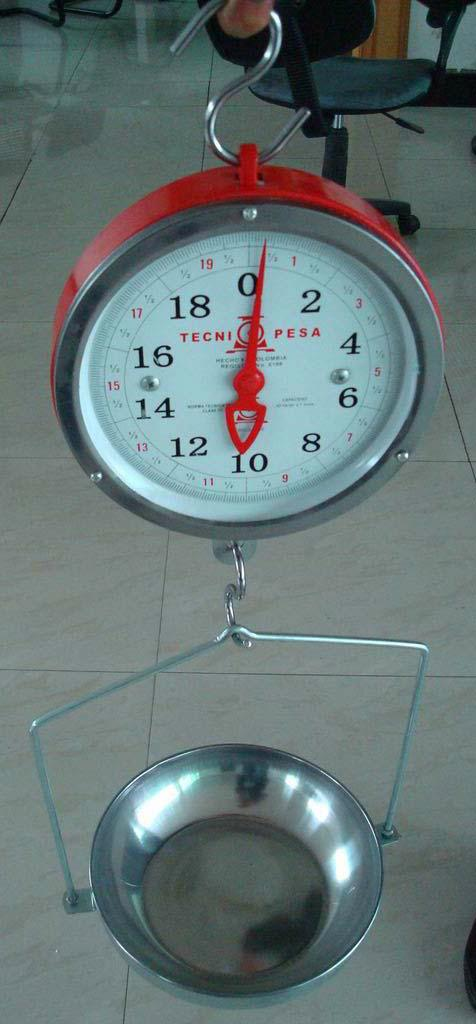 double face hanging scale with pan 1