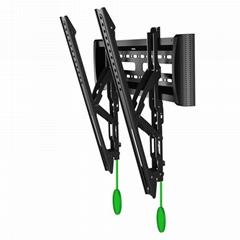 V2-T Adjustable Mount