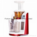 Slow Juicer with DIY Mask Function 1