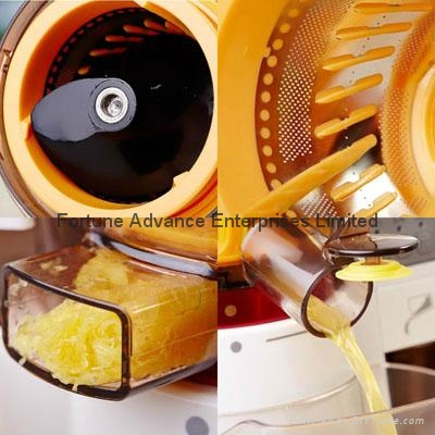 Slow Juicer with DIY Mask Function 3