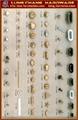 Metal fasteners, badges, buckles