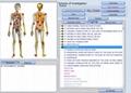 Spanish version Vector 8d LRIS NLS full body analyzer cell scanner equipment